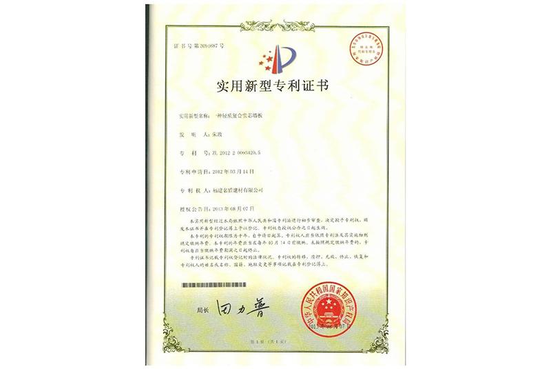 实用专利 (2)